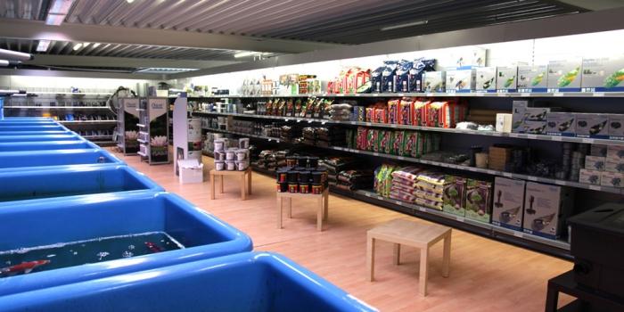 Koi-Fachhandel St. Ingbert